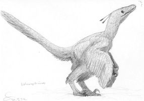 Velociraptorinea indet. by ShinRedDear