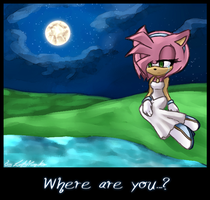 Where are you...? by LadyYumiko