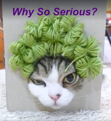 Why so Serious Cat by SereneAutumn