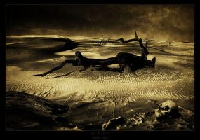 the end by raun