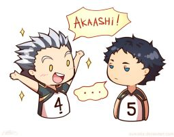 Bokuto and Akaashi by Suncelia