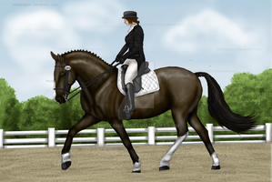 Dressage by Mustang601
