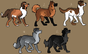 Canine adopts - CLOSED by SAdoptsS