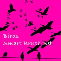 Birds Smart Brush Set by eMelody