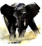 Angry Elephant by dfbovey