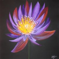 Asian Lily by soarts