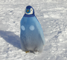 Real-life Piplup