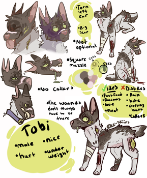 Reference sheet by Vomitin