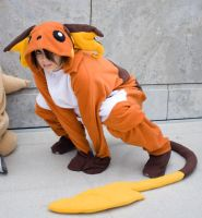 Raichu Pokemon Cosplay