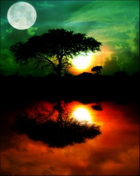 magic african night by Marie-CatoinettePL