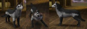 Sims3 Pokemon Mightyena