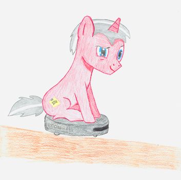Blank Check on a Roomba by BlankCheckPony