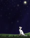 Starclan Guide Us | CotMF by Birch52