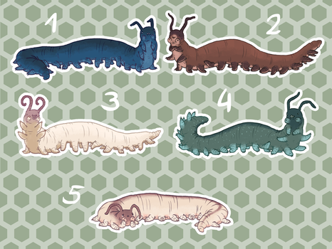 Velvet Worm Adopts by Kampfkewob