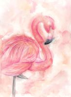 Flamingo by Hummingbird26