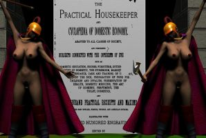 The practical housekeeper and cyclopedia by arrog