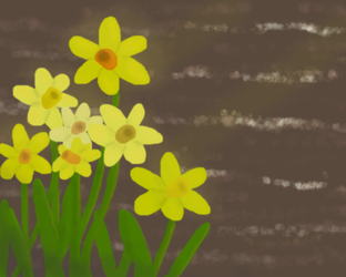 Daffodils by the river by SECRET-NINJA-SUPER-M