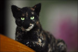 Coco the Felted Feline by nikkiburr