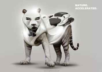 Nature Accelerated - Tiger by squiffythewombat