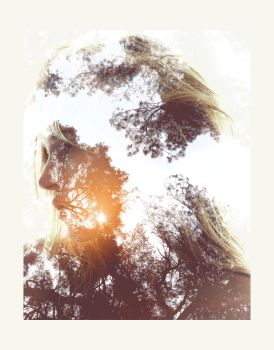 Animated Double Exposure Photoshop Action by GraphicAssets
