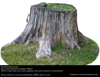 Stump 4 by cindysart-stock by CindysArt-Stock