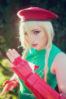 Cammy 3 by KaylaErinOfficial