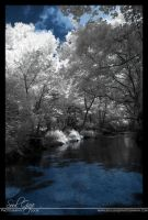 My Creek in Infrared 1 by GothicAmethyst