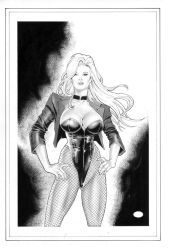 Black Canary_Pinup by MichaelBair