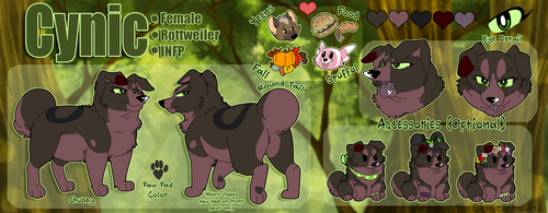 Cynic Reference Sheet 2018 by TheCynicalHound