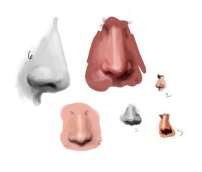 Noses by flamingzigzag