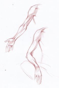 Hand study 4 by bouquiniste