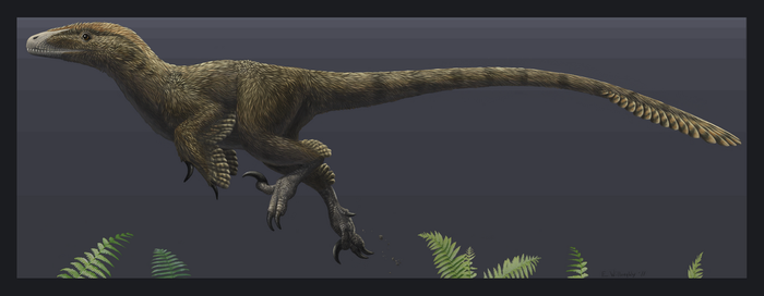 Utahraptor ostrommaysorum by EWilloughby
