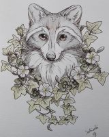 racoon portrait by Schiraki