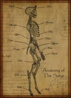 Anatomy of The Satyr by Shadowglove
