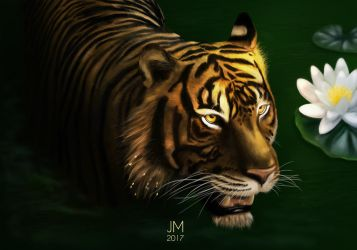 Eyes of the tiger by Arkel666