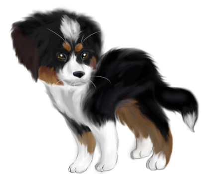 bernese mountain dog by BlossomStar13