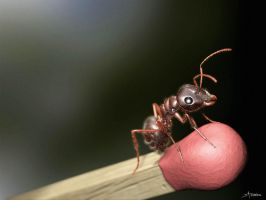 Formiga Virtual - Virtual Ant by playmobil