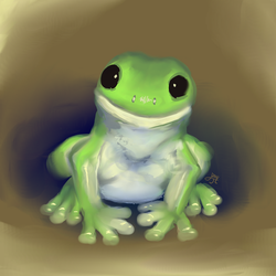 It's a ribbit by Hexaditidom