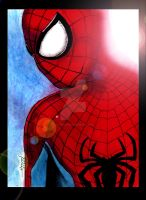 The Amazing Spider-Man by StevenWilcox