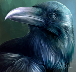 Raven Therril by charfade