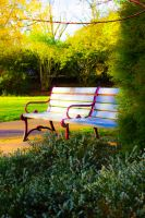 Bench in Green by thedustyphoenix