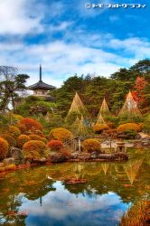 Japanese Garden VI by WindyLife