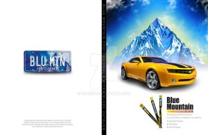 Blue Mountain Catalog Cover by bazikg