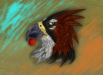 Eagle and cherry by nicowtc