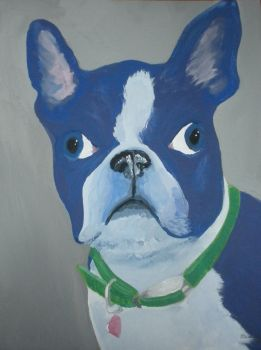 Boston Terrier by partlycloudyholiday