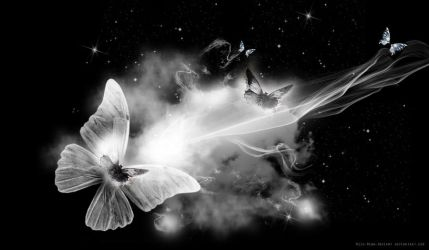BUTTERFLY PREMADE BACKGROUND by VaLeNtInE-DeViAnT