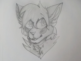 Free Detailed Pencil Drawings! by MintyCatwolfDA