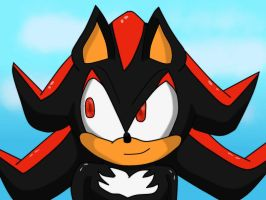 Shadow the Hedgehog by Soshadilver