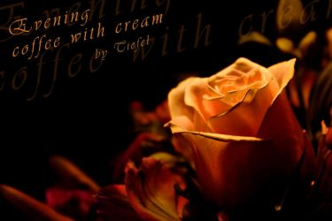 Evening coffee with cream by tiefel