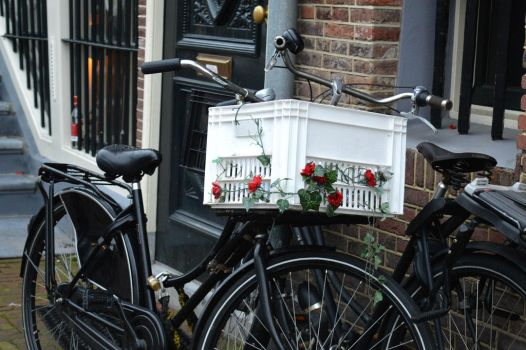 In Amsterdam they Bike by ArtByCleeland